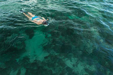 snorkel sail kayak danger charters