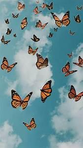 addisynxx in 2020 butterfly wallpaper iphone