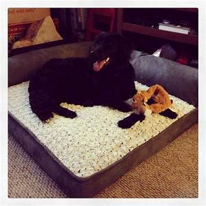 costco dog bed home pinterest beds costco and dog beds With costco dog house