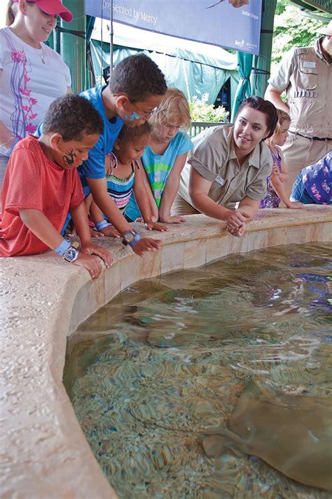 9 free kid friendly activities in St Louis