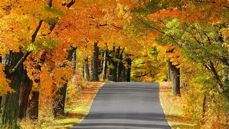 Autumn Roads Wallpapers by Hd Wallpapers For Autumn Hd Windows Wallpapers