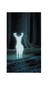 movie - Who cast the Patronus in Harry Potter and the ...