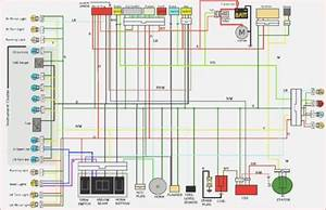 Diagram  Tomos Nitro 50 Wiring Diagram Full Version Hd