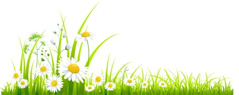 grass clipart free grass pictures clip clipart image clipartix