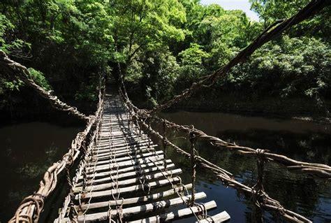 chambre pont adulte trek a bali poster pont en bois et liane suspendu