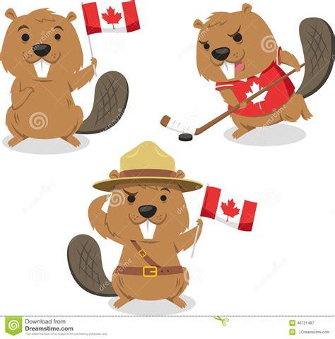 canadian beaver cartoon illustrations stock illustration