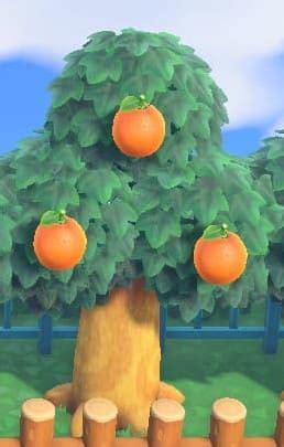 あつ 森 フルーツ の 木