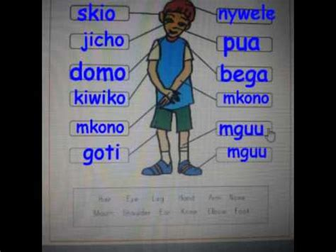 Learn Kiswahili Parts Of The Body Youtube