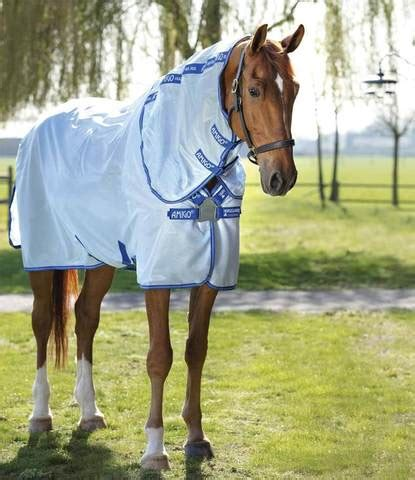 fly sheet amigo horse