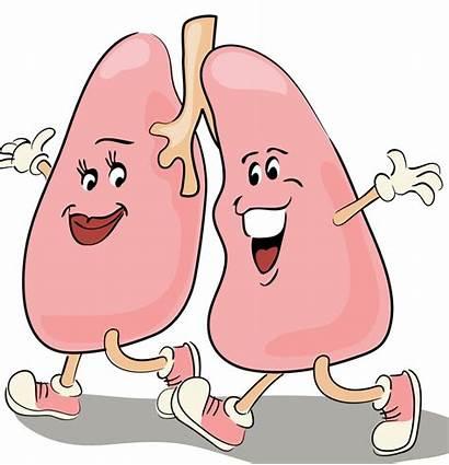 Lungs Cartoon Clipart Lung Respiratory Milk Failure