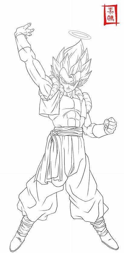 Dragon Gogeta Ball Coloring Dibujos Dibujar Vegito