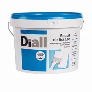 Enduit De Lissage Castorama : enduit de lissage pate 15 kg castorama ~ Dailycaller-alerts.com Idées de Décoration
