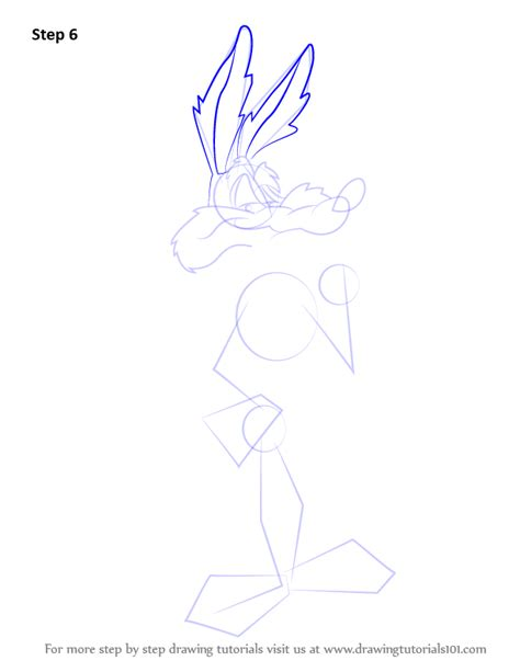 learn   draw wile  coyote  looney tunes looney