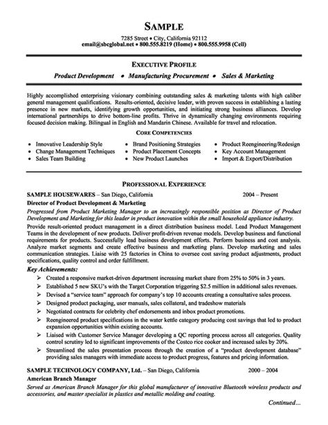 Marketing Manager Resume Objective Exles by The 25 Best Executive Resume Ideas On