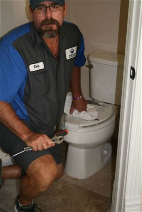 toilet is not flushing toilets drains