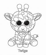 Twigs Coloring Beanie Printable Boo Categories sketch template