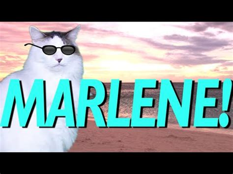 happy birthday marlene epic cat happy birthday song