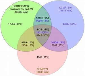 Venn Diagram Showing The Degree Of Overlap Existing E