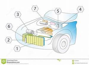 Ca  Diagrama Esquem U00e1tico Auto Del Sistema Del