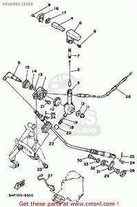 Yamaha Moto 4 Erw 350 Wiring Diagram
