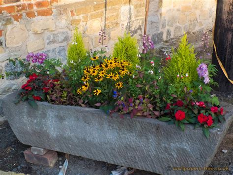 garden troughs inspiration  design ideas  dream