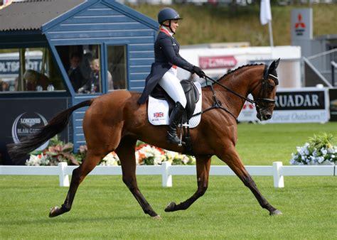 Albino Akhal Teke Horse