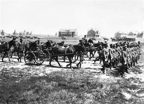 war horses wyoming horse army fort stockmen market wyohistory remount pack parade ranch superior regular company machine still