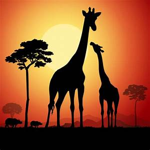 giraffe silhouette with sunset background vector 02 ...