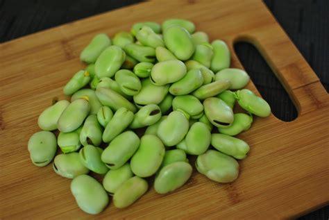 fava beans fava bean falafel recipe dishmaps