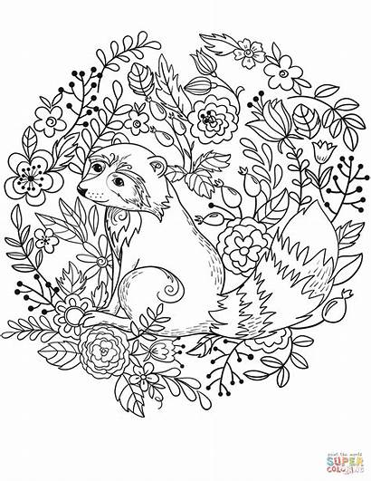 Raccoon Coloring Printable Pages Racoon Raccoons Adult