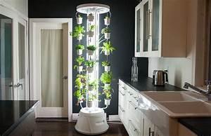 Wohnung Putzen Mit System : hydroponic f r zuhause ein toller indoor garten f r alle ~ Lizthompson.info Haus und Dekorationen