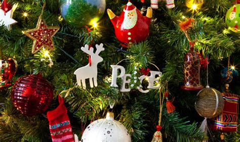 top  facts  christmas trees top  facts life