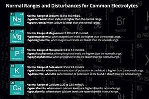 Common Electrolytes