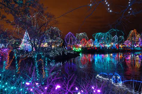 columbus zoo wildlights lights some
