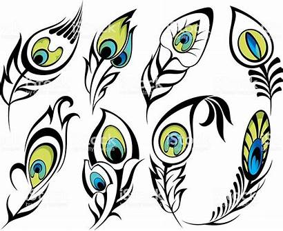 Feathers Peacock Feather Clip Clipart Single Tattoo