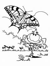 Coloring Snorkels Casey Butterfly Popular sketch template