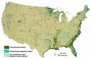 Loss Of Wetlands In The Southwestern United States