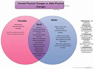 Female Vs  Male Venn Diagram   Venn Diagram