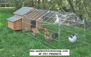 Comment élever Des Poules Pondeuses : chicken run poulailler poulailler poule et poule pondeuse ~ Dode.kayakingforconservation.com Idées de Décoration