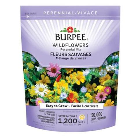 burpee wildflower bag perennial mix seed   home