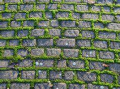 moos entfernen terrasse moos an der hauswand entfernen 3 effektive tipps