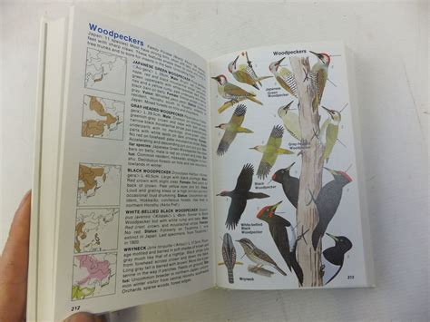A Guide To Identifying Your Home Décor Style: A FIELD GUIDE TO THE BIRDS OF JAPAN Written By Massey