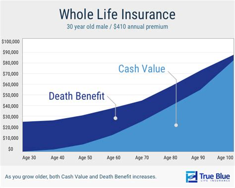 Life Insurance Buyer's Guide [2018]  True Blue Life Insurance. Sipi Dental Clinic Albuquerque Nm. Headache After Car Accident Mba Study Abroad. What Is Business Intelligence System. Culinary Schools In Hampton Roads. Cable Companies In Alabama Above All Masonry. Long Term Disability Insurance Quotes Online. Caponigro Public Relations Lsat Course Online. Roth Ira Account Rules Password Keeper For Pc