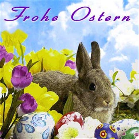 frohe ostern lustige ostergrüße frohe ostern seite 2 katzen forum