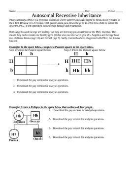 Genetics Autosomal Recessive Inheritance Punnett Squares & Pedigree Worksheet