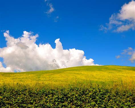 5 cose che forse non sapete su Siena - Io Amo i Viaggi