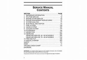 Service Manual 2013 Evinrude E N