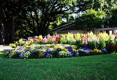 am 233 nager un jardin avec des plantes fleuries ext 233 rieur