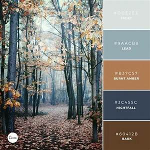 best 25 burnt orange paint ideas on pinterest burnt With best brand of paint for kitchen cabinets with texas longhorn wall art
