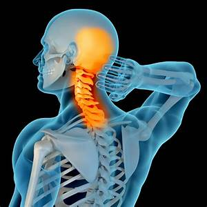 Denver Back  Neck  U0026 Spine Specialized Physical Therapy For